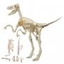 Dinosaure à assembler